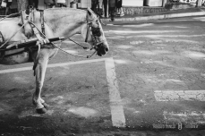 cursos de fotografia em pouso alegre, curso de fotografia itajubá, cursos de fotografia minas gerais